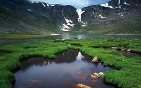 Обои река, зелень, жизнь, горы, природа