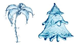 Картинка арт, ёлка, spruce, брызги, art, рисунок, drops, вода, пальма, всплеск, drawing, капли, креатив, ель, palm ...