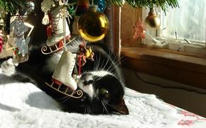 Обои новый год, ель, окно, игрушки, зима, ёлка, кот
