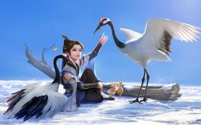 Картинка снег, птицы, дерево, арт, девочка, птенцы, hao6578300