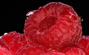 Картинка фон, Raspberry, ягода-малина