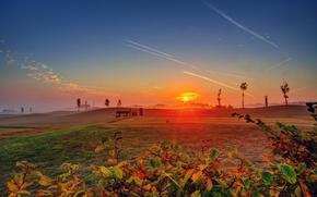 Картинка небо, солнце, деревья, природа, широкоформатные