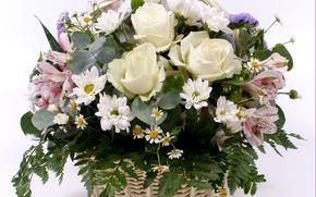 Картинка цветы, обои, flowers
