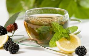 Обои ягоды, натюрморт, лимон, чай, чашка, ежевика, мята