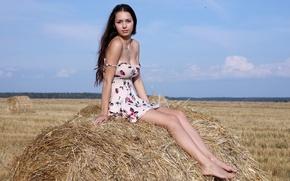 Картинка грудь, взгляд, девушка, волосы, платье, сено, красивая, Sexy, Helga Lovekaty