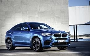 Картинка BMW, cyan, кроссовер, x6 m