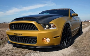Картинка Mustang, Ford, Shelby, 2011, Snake, Golden, GT640, GeigerCars