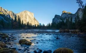 Картинка деревья, камни, скалы, Калифорния, США, речка, Национальный парк Йосемити, Yosemite National Park