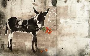 Картинка цветы, стиль, картина, ослик
