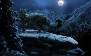 Картинка ночь, снежный, барс