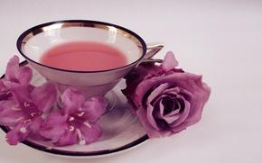 Картинка цветы, розы, чашка, flowers, блюдце, cap, roses