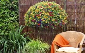 Обои цветы, кресло, отдых, сад, кусты, калибрахоа