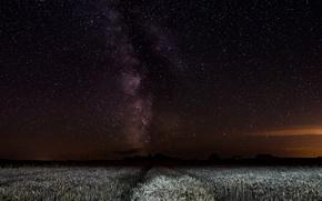 Картинка поле, космос, звезды, ночь, млечный путь
