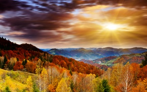 Обои облака, осень, небо, рассвет, лучи солнца, лес, деревья, горы