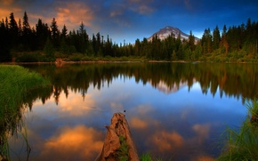 Картинка лес, вода, пейзаж, природа, озеро, фото, США, Oregon, Mt Hood National