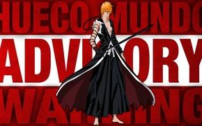 Картинка sword, game, Hero, Bleach, anime, katana, man, Ichigo, asian, Kurosaki Ichigo, Boy, manga, japanese, chest, ...