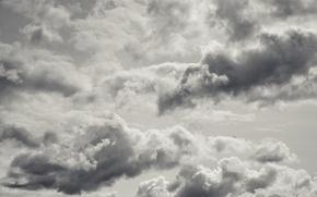 Картинка sky, bird, clouds