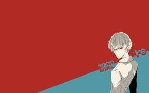 Картинка минимализм, админ - глупый хомячок, Kaneki Ken, Sasaki Haise, Токийский Гуль: Перерождение, Tokyo Ghoul: Re