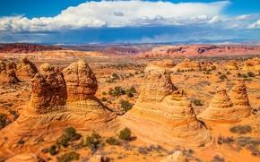 Картинка скалы, краски, пустыня, Аризона, США