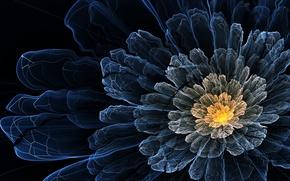 Картинка цветок, линии, темный, лепестки, арт, волнистый