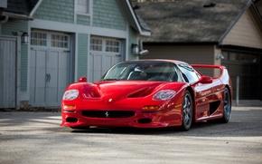 Обои F50, 1995, суперкар, феррари, Ferrari