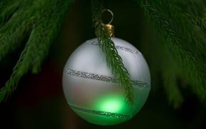 Картинка игрушка, елка, новый год, шар, рождество, ветка, украшение