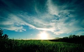 Картинка небо, трава, облака, закат, синий, зеленая
