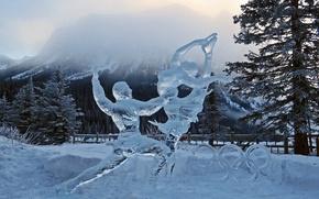Картинка снег, лёд, олимпиада, сочи, 2014, Dancing With the Stars, Nancy Chow, Танцы со звездами