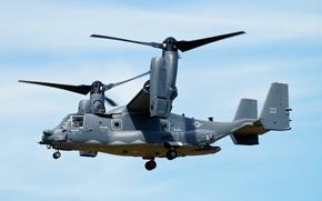 Картинка авиация, самолёт, Boeing CV-22B Osprey