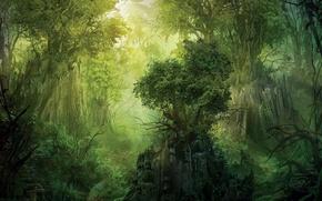 Картинка деревья, зеленый, скала, Лес