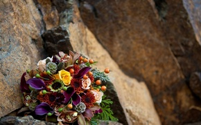 Картинка colorful, rose, flower, photography, photo, flowers, beautiful, pretty, harmony, orchid, stones, cool, lovely, bouquet, roses, …