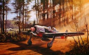 Картинка war, art, ww2, dogfight, fw 190, painting. drawing