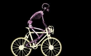 Картинка велосипед, скелет, рентген