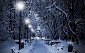 Картинка зима, снег, деревья, огни, парк, вечер, фонари, лавочки
