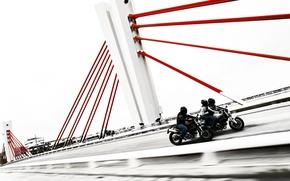 Картинка monster, bike, gucati