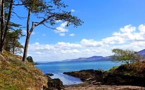 Картинка море, небо, облака, деревья, побережье, Ирландия, Kenmare Bay, Kerry