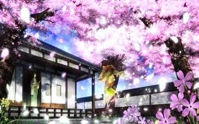 Картинка лепестки, сад, сакура, кимоно, двое, цветение, веранда