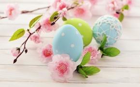 Картинка цветы, праздник, яйца, ветка, весна, голубые, зеленые, Пасха, розовые, цветение, Easter, пасхальные