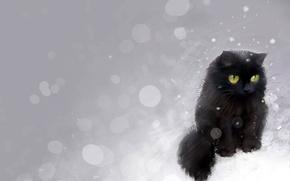 Обои блики, нарисованый, Кот, черный