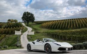 Обои спайдер, 488, феррари, Spider, кабриолет, Ferrari