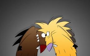 Обои Деггет, Норберт, бобры, The Angry Beavers