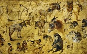 Картинка животные, картина, Ян Брейгель старший, Эскизы Зверей