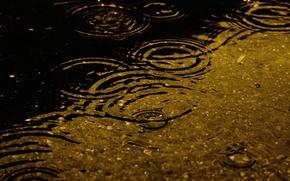 Картинка дождик, вода, капли