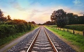 Картинка природа, рельсы, железная дорога