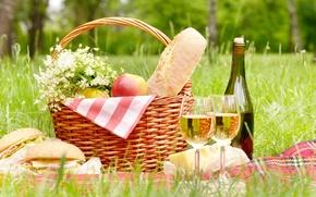Обои яблоки, салфетки, корзина, скатерть, пикник, лето, ромашки, сыр, покрывало, деревья, трава, букет, бутылка, лес, бокалы, ...