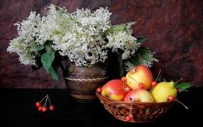 Картинка цветы, лимон, яблоко, ваза, фрукты, натюрморт, черешня