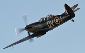 Картинка небо, британский, двухместный, WW2, Tr.9, учебно-тренировочный самолет, Spitfire Trainer