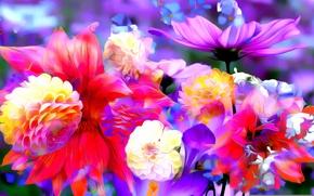 Картинка линии, цветы, рендеринг, краски, лепестки, бутон