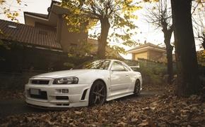 Обои ниссан, datsun, face, white, nissan, wheels, skyline, stock, front, r34, gtr, tuning, белый, japan, low, ...