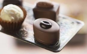 Обои макро, еда, шоколад, фокус, конфеты, крем, десерт, food, 1920x1200, macro, сладкое, focus, chocolate, sweet, cream, ...